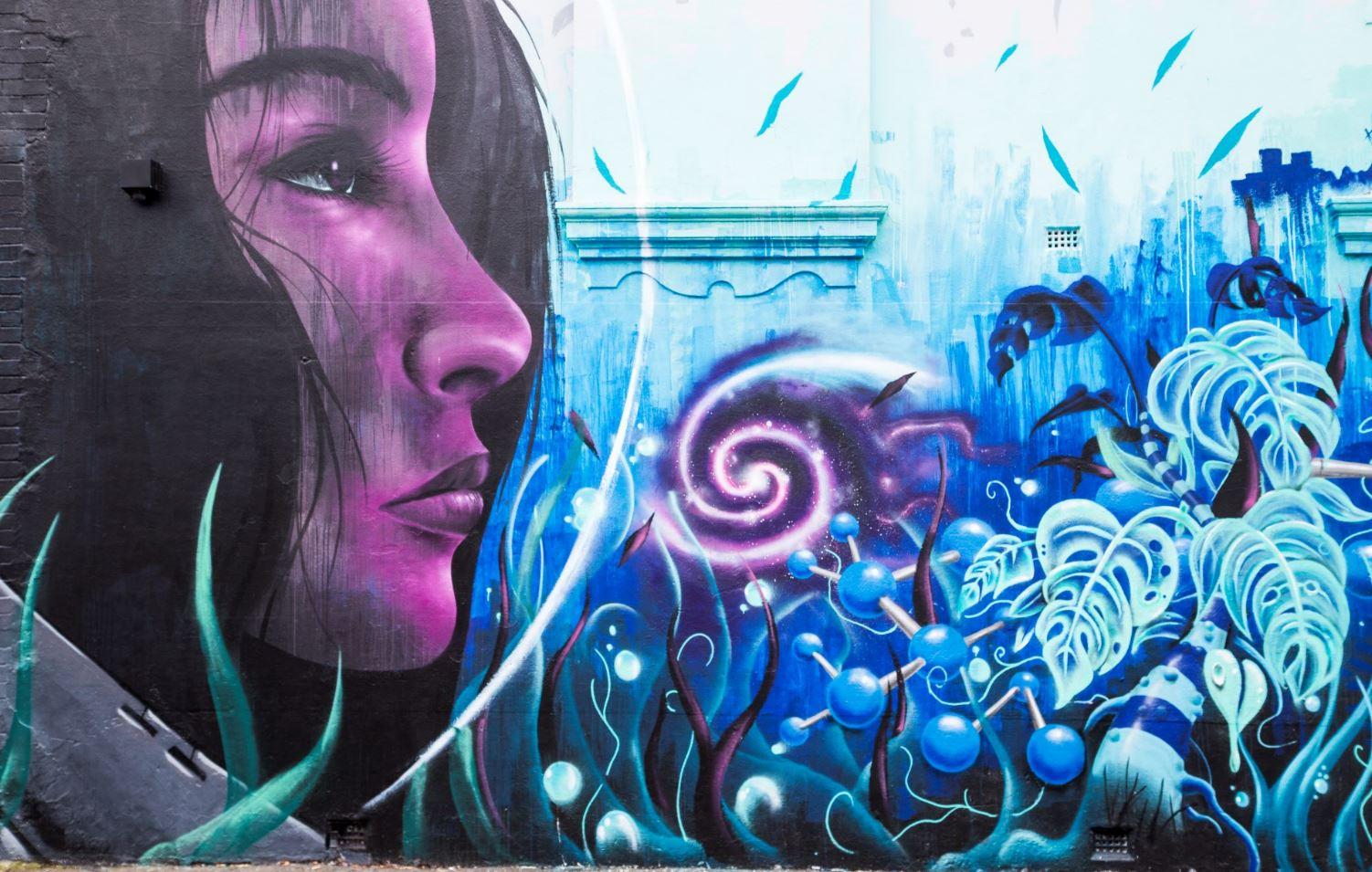 Barry St 1 Chapel Street Street Art
